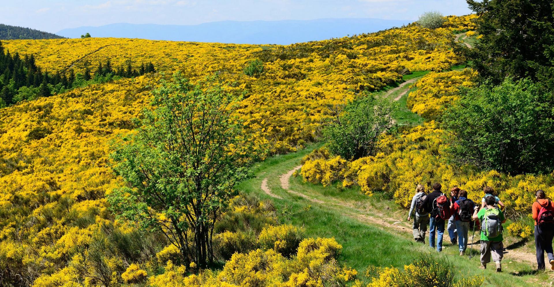 Hiking in Ardeche