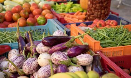 - marché à la ferme les pins_Montchenu