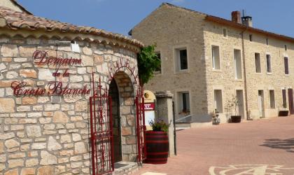 Rose-Marie Archambault - Découvrir les vins des côtes du Rhône