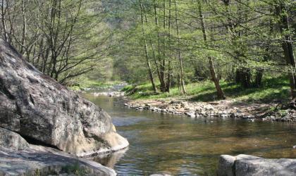 AH Tourisme - Rivière Daronne