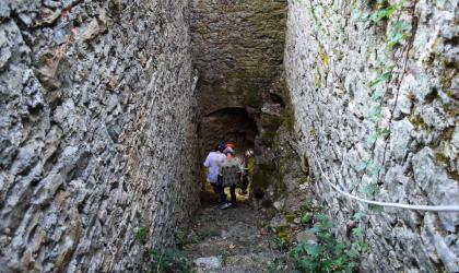 OT Cévennes d'Ardèche