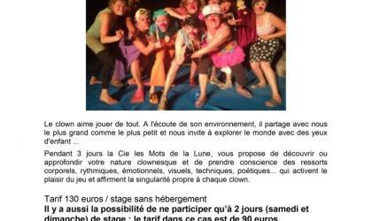 Domaine de Montloubiers - Stage de clown