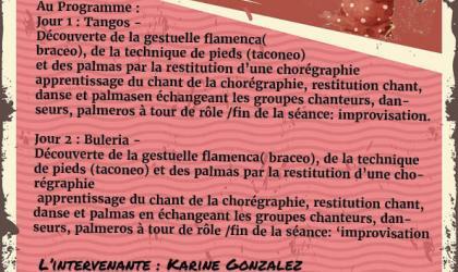 ©collectif décohérence - Stage Flamenca