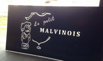 @le petitmalvinois - le petit malvinois_mauves