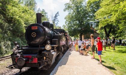 Train de l'Ardèche - Train des gorges fascinant week-end Vignobles&Découvertes