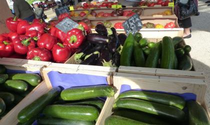 Ardèche Hermitage - Légumes