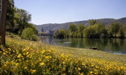 Ardèche Hermitage - Basin des Musards La roche de Glun
