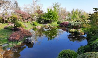 Jardin Zen - Jardin Zen