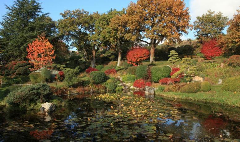 E. Borja - Jardin Zen