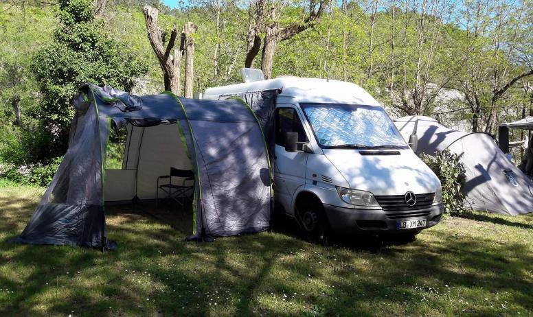 camping_actinidias