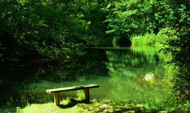 © Camping Coeur d'Ardèche