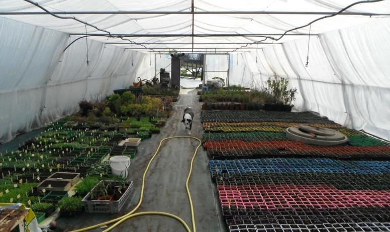 Exploitations les jardins de sardailhac - Serres