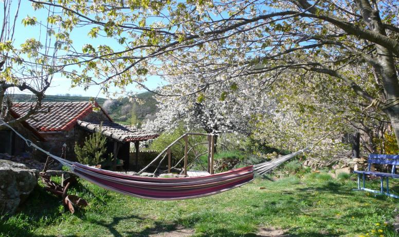 Hamac dans les cerisiers