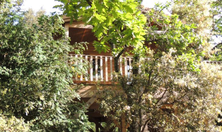 © Domaine de Briange - Cabane dans les arbres