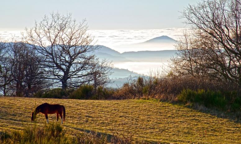 © Ferme de Prémaure - La vue panoramique