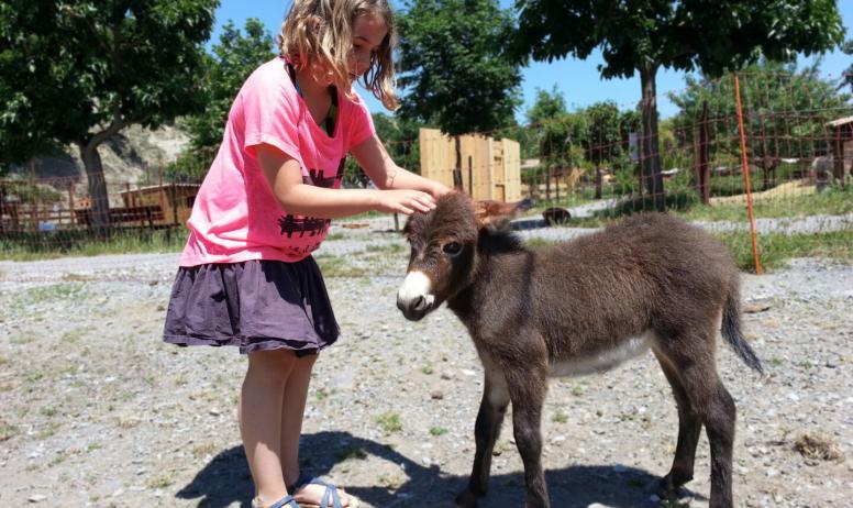 Parc animalier de Lussas - Parc animalier à Lussas