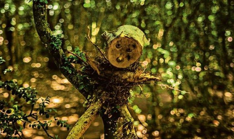 ©mariepierson - La Forêt des Jeux