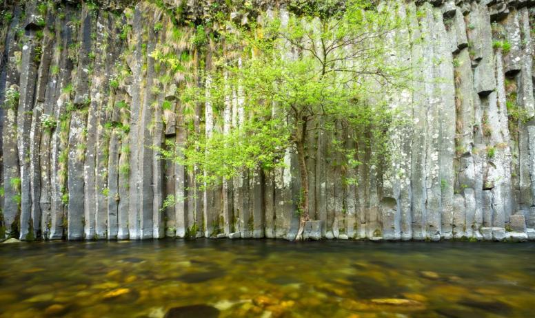 ©S.BUGNON - Fabras - Orgues basaltiques dans la vallée du Lignon-2 ©S.BUGNON