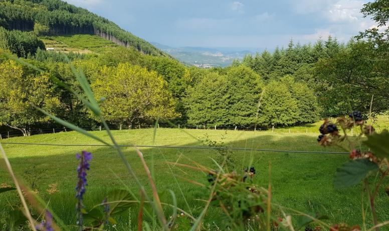 Gîtes de France - Vue de la vallée et de Chirol tout au fond