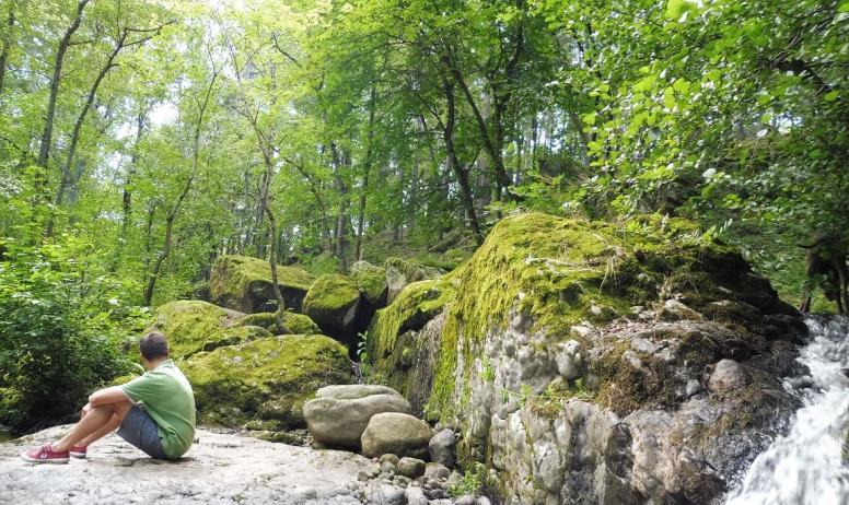 © Les Blaches - Le ruisseau du Rantoine qui s'écoule en bas du jardin