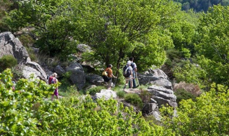 Chemin Faisant - Chemin Faisant - Piémont Ardéchois