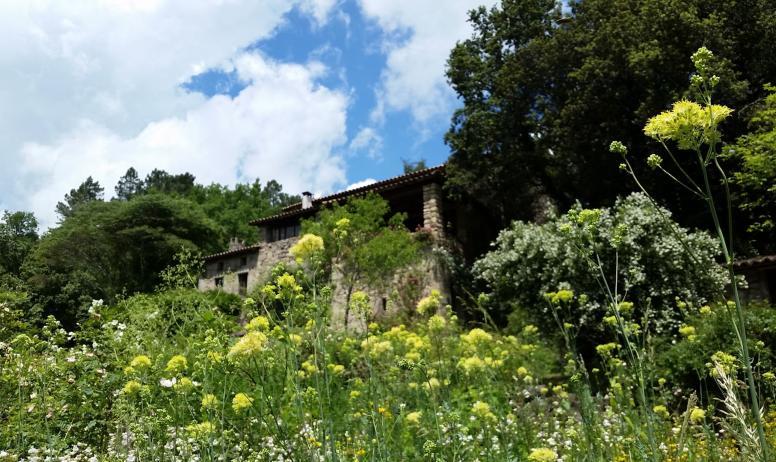 Floriane Ferrand - La Roseraie de Berty