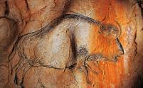 la grotte ornée de Vallon-Pont-d'Arc (dite Grotte Chauvet) en Ardèche, trésor de l'humanité
